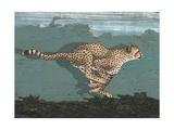 Side-View of Leopard Running Lámina giclée prémium por Alan Baker
