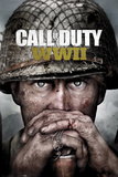 Call Of Duty - Stronghold Ww2 Key Art Kunstdrucke