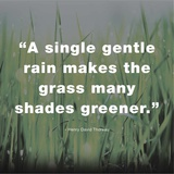 A Single Gentle Rain - Henry Thoreau Quote (Dark) Art by  Quote Master
