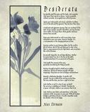 Desiderata Blue Daguerreotype Poster por  Quote Master