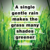 A Single Gentle Rain - Henry Thoreau Quote (Vibrant) Prints by  Quote Master
