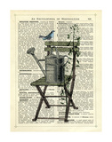Gardener's Chair Print by Marion Mcconaghie