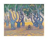 Place des Lices, St Tropez Premium Giclee Print by Paul Signac