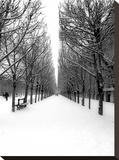 The Tuileries Garden under the snow, Paris Stretched Canvas Print by Michel Setboun