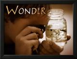 Wonder (Wunder) Kunstdrucke