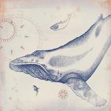 Oceanus Cetacea Giclee Print by Ken Hurd
