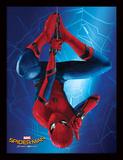 Spider-Man Homecoming - Hang Collector Print