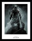 Skyrim - Dragonborn verzamelaarsprint Verzamelaarsprint