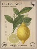 French Stamp - Lemon Impressão giclée por Maria Mendez