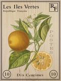 French Stamp - Orange Impressão giclée por Maria Mendez