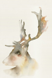 Forest Odyssey - Stag Poster by Kristine Hegre