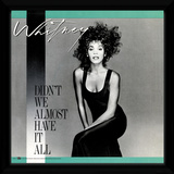 Whitney Houston - Didn't We Almost Have It All Lámina de coleccionista