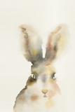 Forest Odyssey - Hare Prints by Kristine Hegre