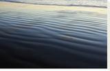 Santa Monica 4551 Bedruckte aufgespannte Leinwand von Florence Delva