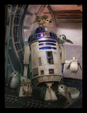 Star Wars: The Last Jedi - R2-D2 & Porgs Samletrykk