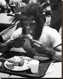 Even Apes Need a Break Stretched Canvas Print by  Hollywood Historic Photos