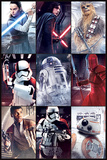 Star Wars: Episode VIII- The Last Jedi -Characters Print