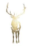 Gold Foil Standing Elk Prints by Ethan Harper