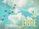 Tekst: Se Libre Poster van Rebecca Peragine