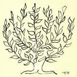 The Bush (Small) Serigrafi (silketryk) af Henri Matisse