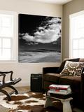Field with Clouds Poster van Jamie Cook