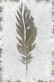 Imprint 1 ポスター : Kimberly Allen