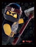 Lego Ninjago - il film - Cole, primo piano Stampa del collezionista