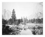 View Down the Valley, Yosemite プレミアムエディション : Carleton E Watkins