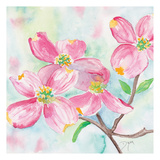 Pink Dogwood II Affiches par Beverly Dyer