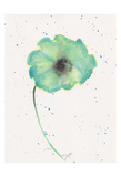 Blue Green Poppy 1 Posters par Beverly Dyer
