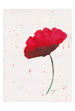 Red Poppy 2 Posters par Beverly Dyer