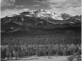 """Trees Fgnd, Snow Covered Mts Bkgd """"Long's Peak From North Rocky Mountain NP"""" Colorado 1933-1942 高品質プリント : アンセル・アダムス"""