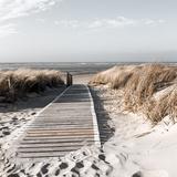 Ocean Walkway Affiches