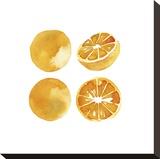 Orange Quartet Stretched Canvas Print by Kristine Hegre