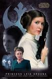 Princess Leia - Memory Pôsters