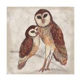 Two Owls I Kunstdrucke von Lisa Ven Vertloh