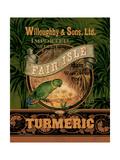 Turmeric Prints by Pamela Gladding