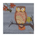 Awesome Owls II Kunstdruck von Paul Brent
