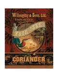 Coriandre Posters par Pamela Gladding