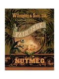 Nutmeg Poster von Pamela Gladding
