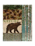 Nature Trail II Kunstdruck von Paul Brent