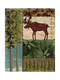 Nature Trail I Poster von Paul Brent