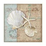 Linen Shells I Posters af Paul Brent