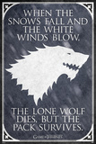 Game Of Thrones - Lone Wolf Fotografia