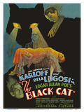 Edgar Allan Poe's The Black Cat - Starring Boris Karloff, Bela Lugosi Pôsteres por  Pacifica Island Art
