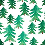 Background of Christmas Tree. Christmas Tree Seamless Pattern. Winter Watercolor Landscape. Waterco Photographic Print by  golant