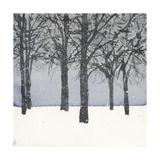 Forest Sketch I Premium Giclee Print by Samuel Dixon