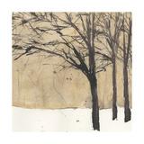 Forest Sketch II Reproduction giclée Premium par Samuel Dixon