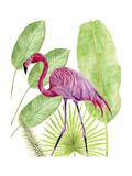 Tropical Flamingo I Affiches par Melissa Wang