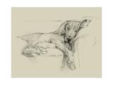 Dog Days I Reproduction giclée Premium par Ethan Harper